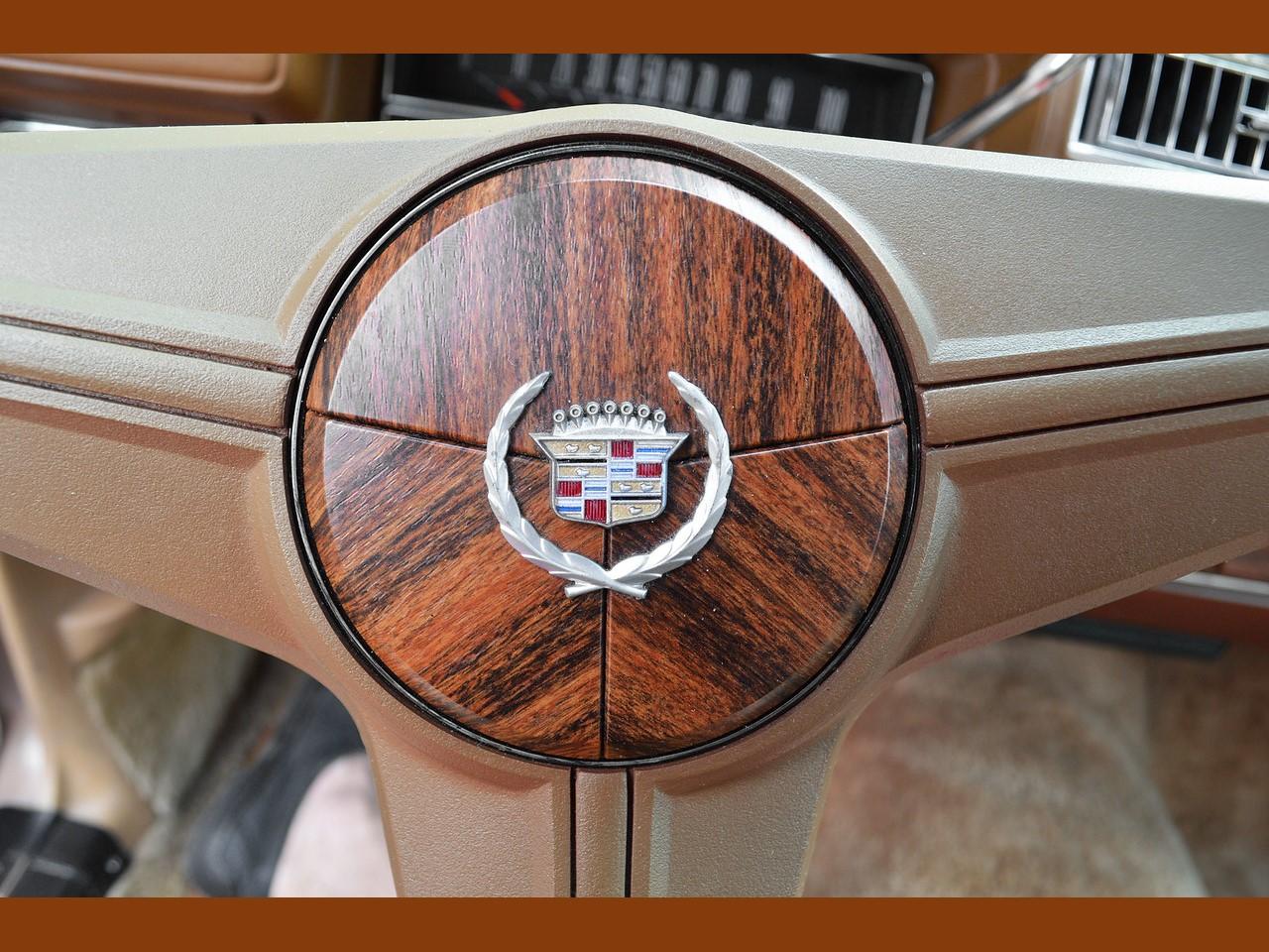 1976 Cadillac Seville 22