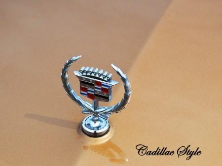 1976 Cadillac Seville 45
